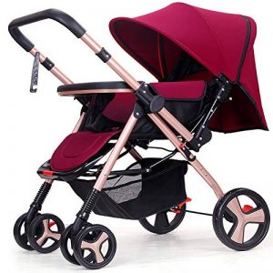 poussette double trottine TOP 11 image 0 produit