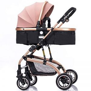 poussette double trottine TOP 9 image 0 produit